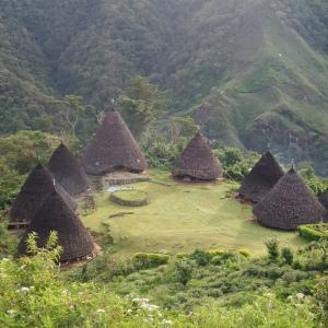 7 rumah di area lembah Kampung Waerebo