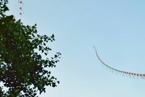 Belajar dari layang-layang: tetap percaya pada pemegang tali, walau angin melaju kencang.